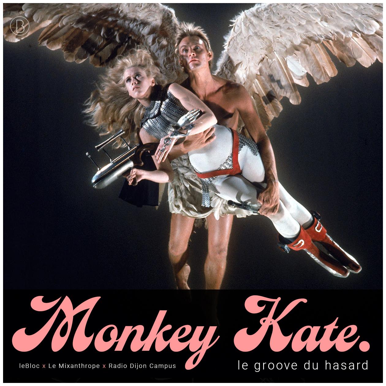 Monkey Kate 2