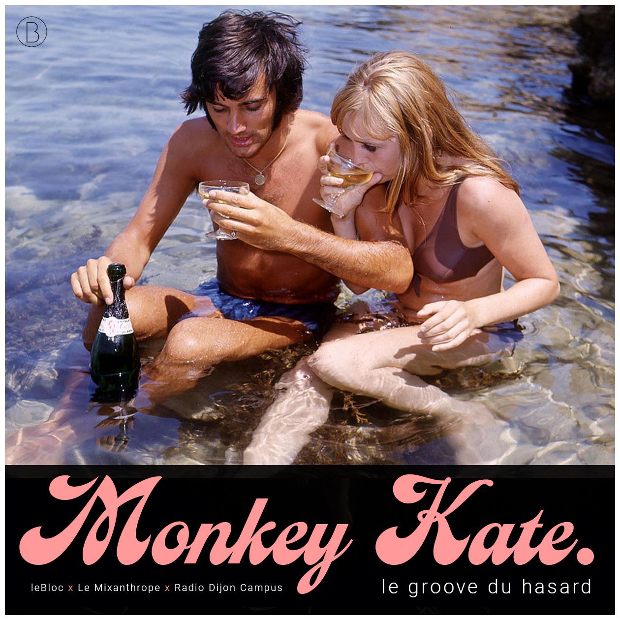 Monkey Kate 3